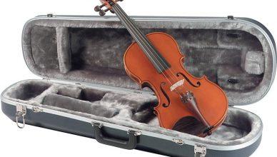 andard-model-av5-violin-800x542