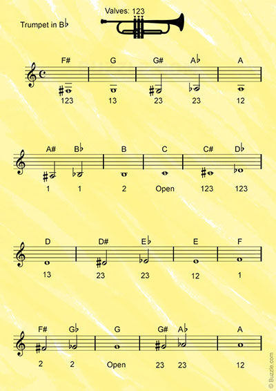 Trumpet Fingering Chart For Beginners  Essential Yookamusic