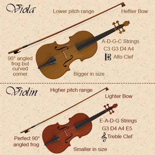 How to Tell the Difference Between Viola and Violin ...